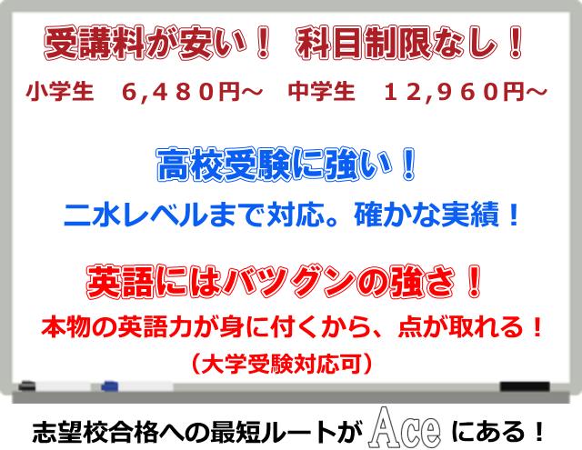 学習塾は金沢市の個別指導塾Aceがおすすめ